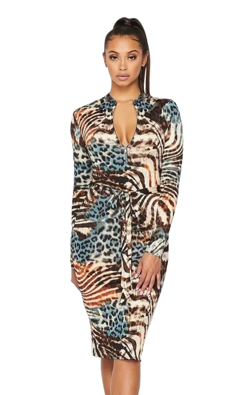 Blaire Animal Print Dress