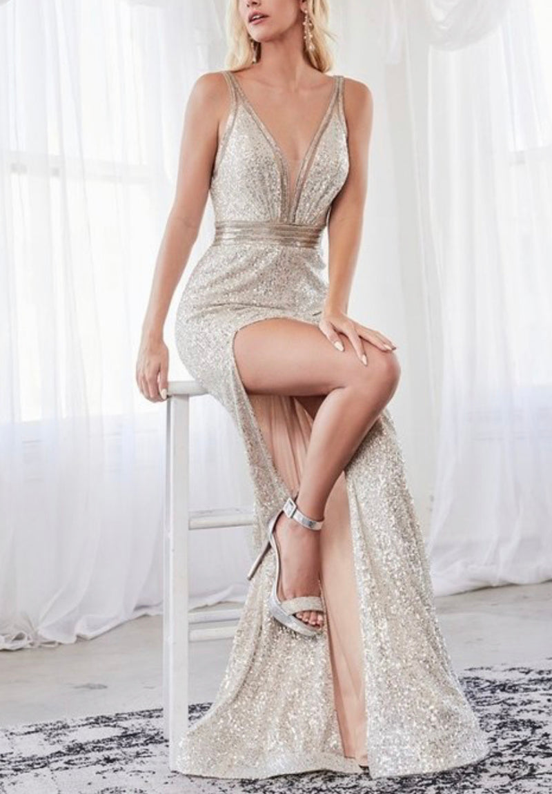 Bellini Silver Gown