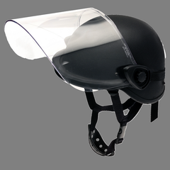 Mounted Face Protector