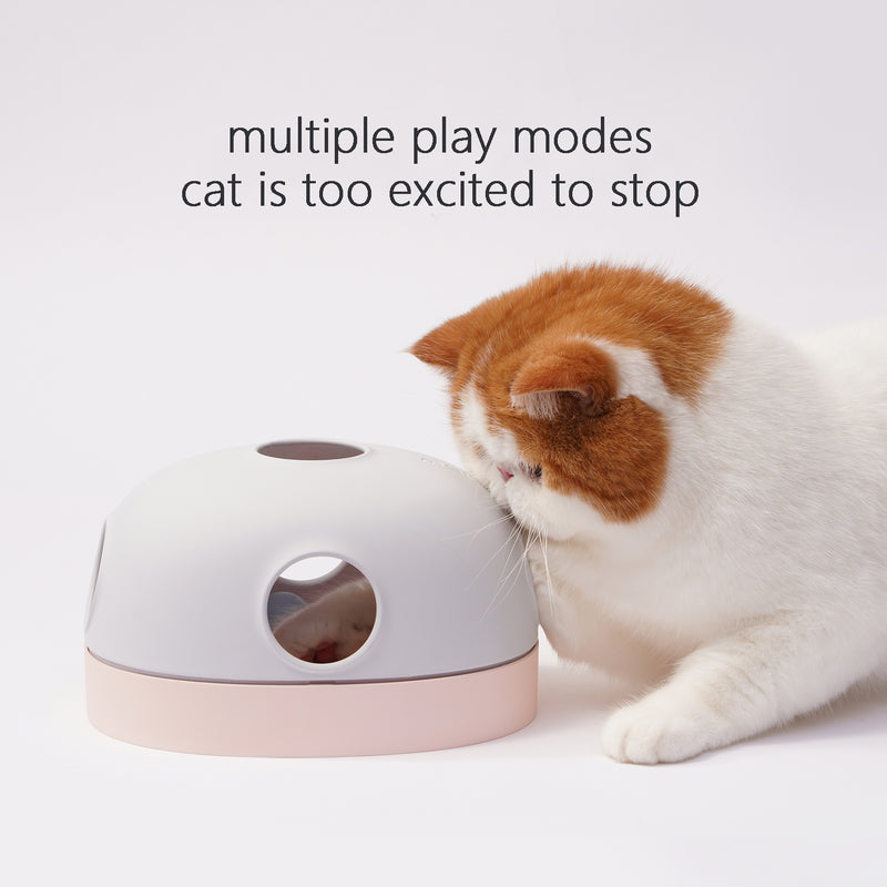 cat and toy multiple play modes