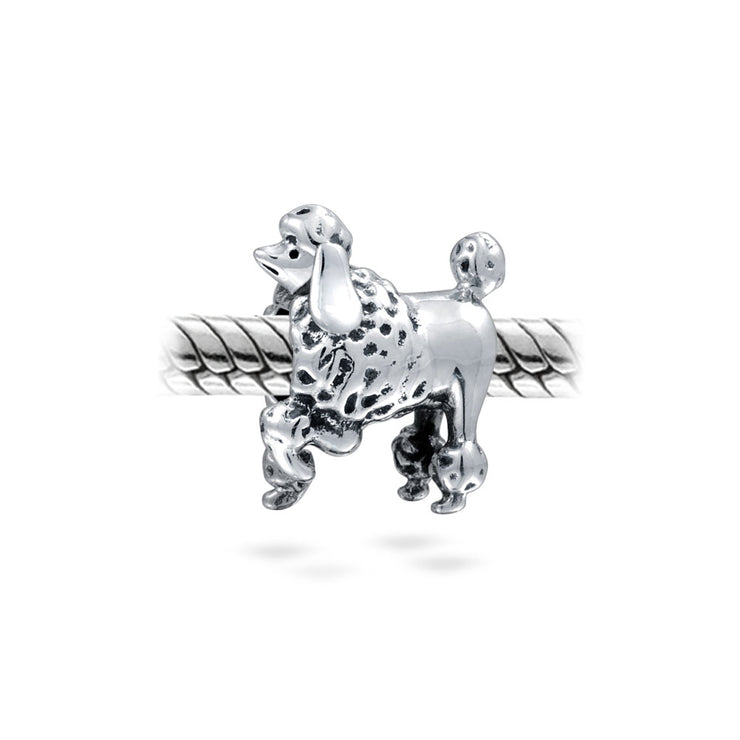Small Bread Puppy Pet Animal Lover Show Poodle Dog Bead Charm Silver