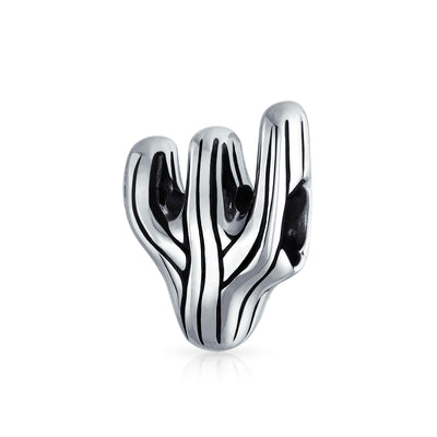 Sonoran Desert Cactus Travel Charm Bead 925 Sterling Silver European