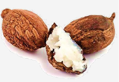 Ingredient - Shea
