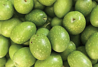 Ingredient - Olives - Squalane