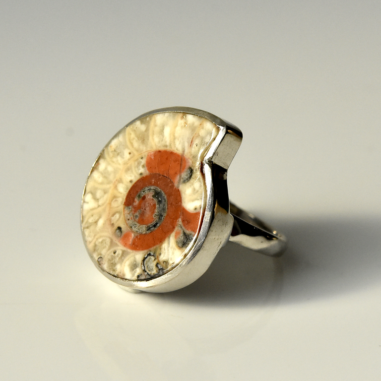 Fossilized Ammonite Ring - Goldmakers Fine Jewelry