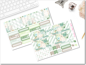 EC June Monthly Kit