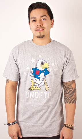 Champion Bird T-Shirt Undefeated Gray
