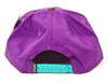 Printed Grapes Snapback Official Purple/Teal