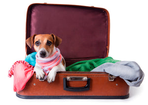 ESA -Emotional Support Animal REQUIRED AIRLINE FORMS
