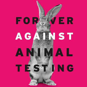 100% Cruelty Free Guaranteed! Myths and Facts about testing on animals in China!