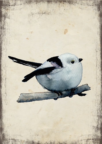 Őszapó - üdvözlőlap | Long-tailed tit - Greeting Card