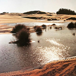 The Living Dunes - Jerry Larson - The Oregon Dunes - Coffee Table Book - Nature Photography