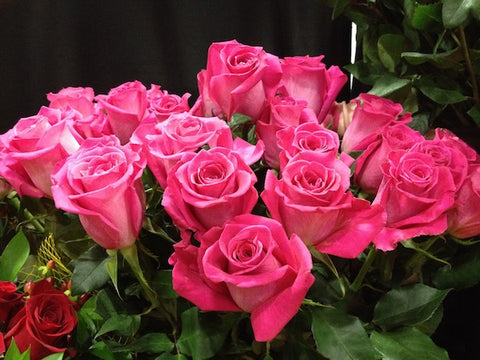 There were so many beautiful flower vendors at the show.