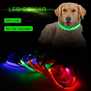 LED Lighted Up Dog & Cat Collars