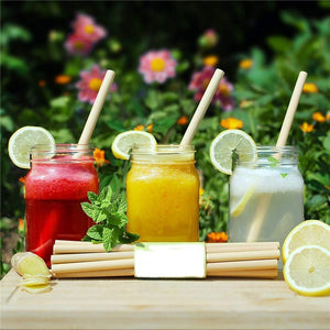 Organic Bamboo Straws (10Pcs/lot)-Bamboo Diaries