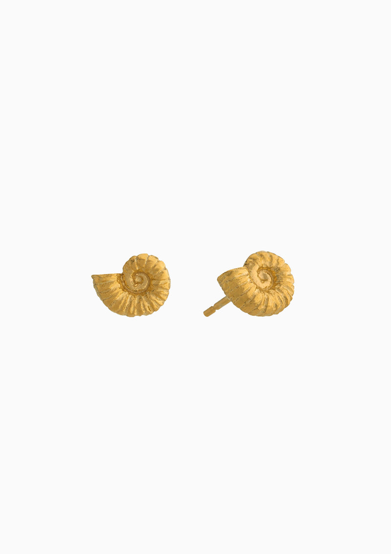 Small Ammonite Stud Earrings