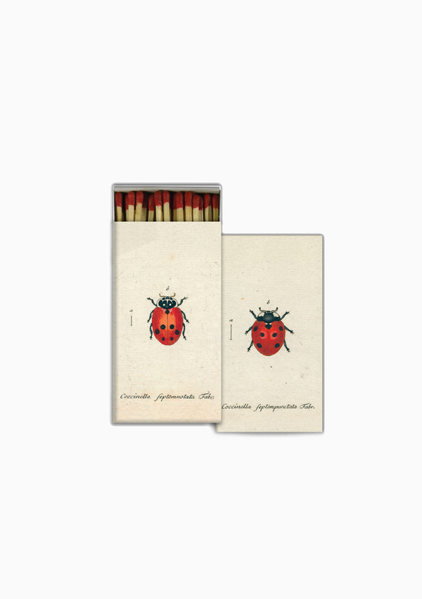 Matches | Lady Bug