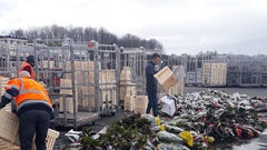 Source: Royal FloraHolland flowers being disposed of in April 2020
