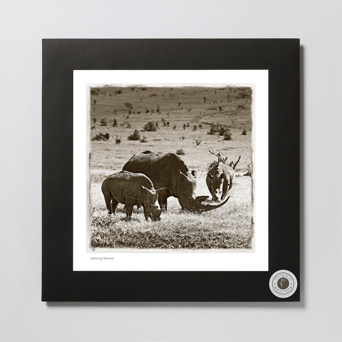 African Fine Art Photo Print Wanyama Rhino 330X340MM