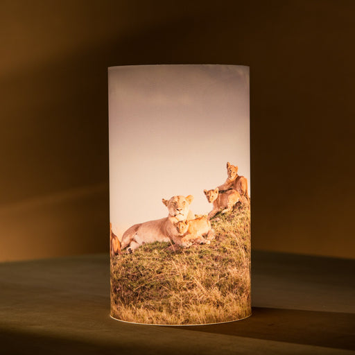 African Fine Art Candle Shade Colour Lion Family 140MM