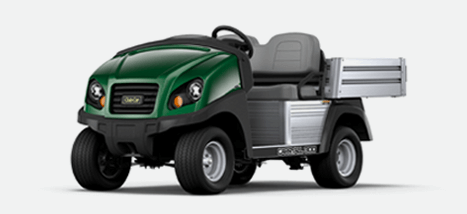 Carryall 300 Turf