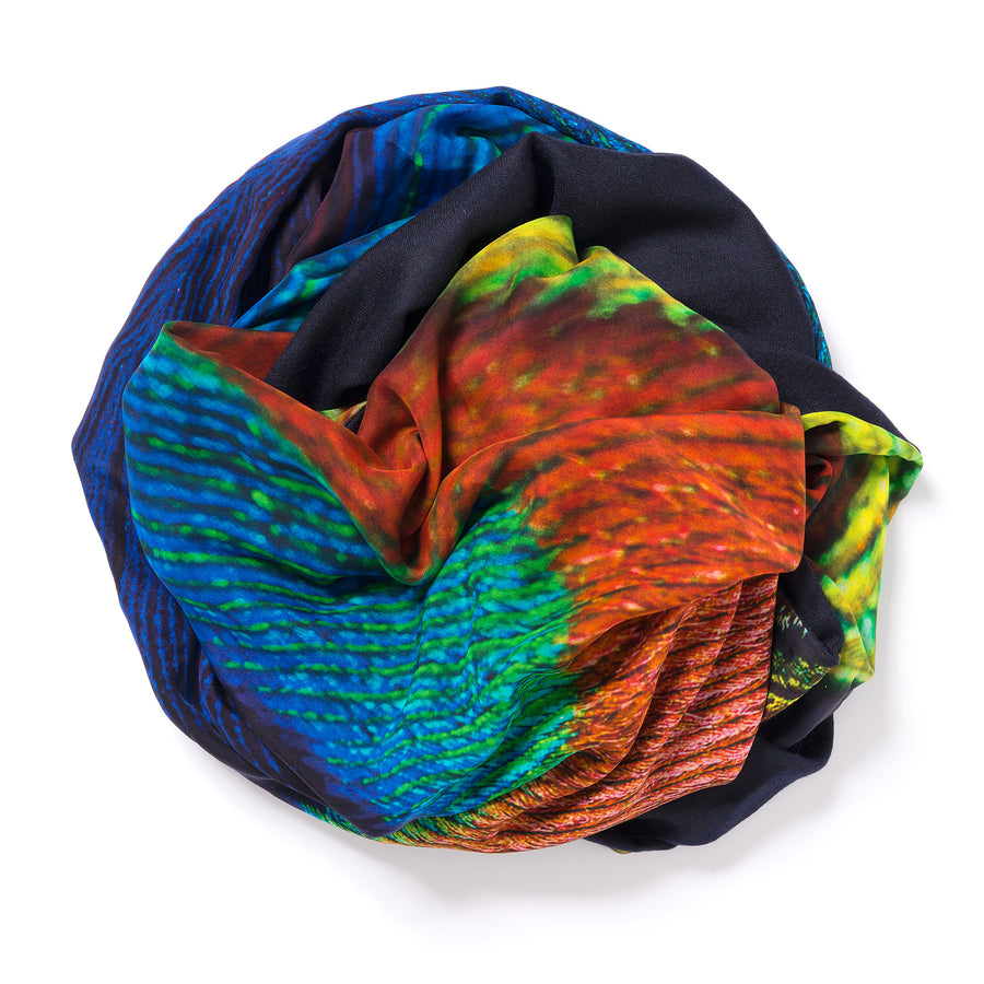 peacock feather pashmina