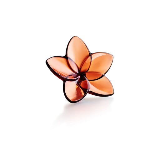 "Sculpture ""Bloom collection"" - Baccarat"