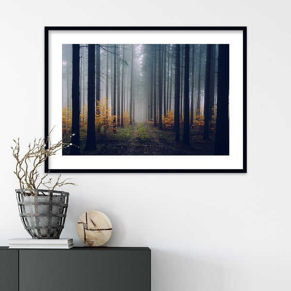 Foggy Autumn Day in the Forest | Wall Art Print by Jan Erik Waider