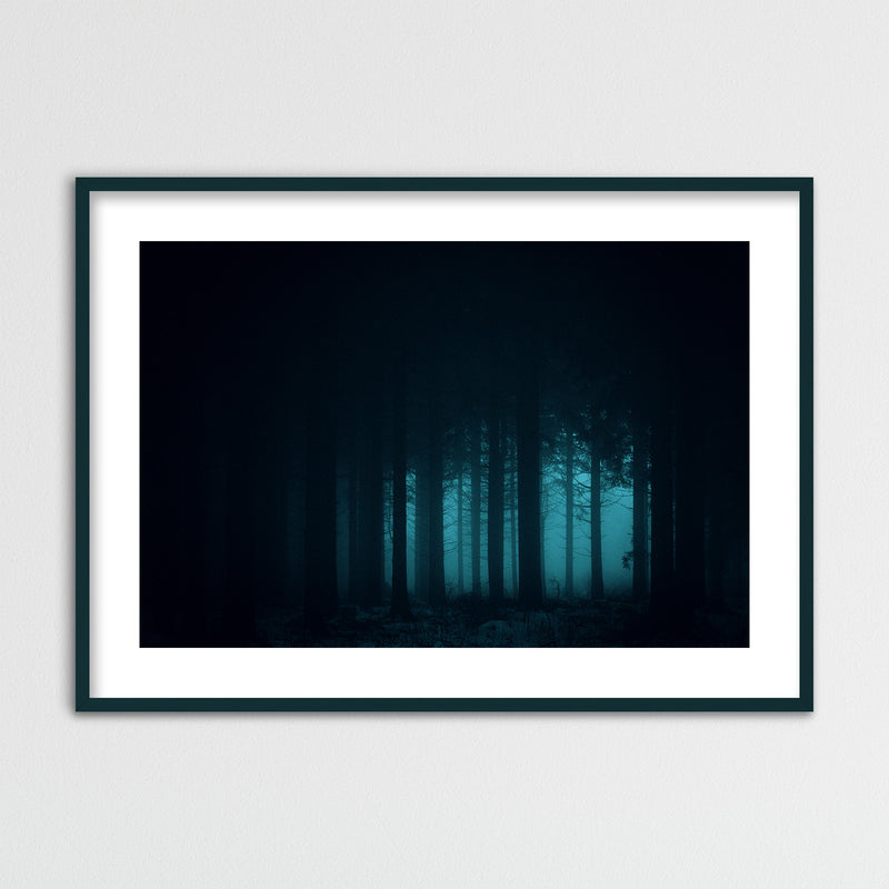 Dark and Mysterious Forest | Framed Photo Print by Jan Erik Waider