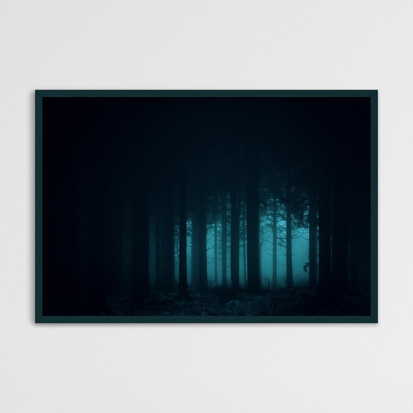 Dark and Mysterious Forest | Photography Print by Northlandscapes
