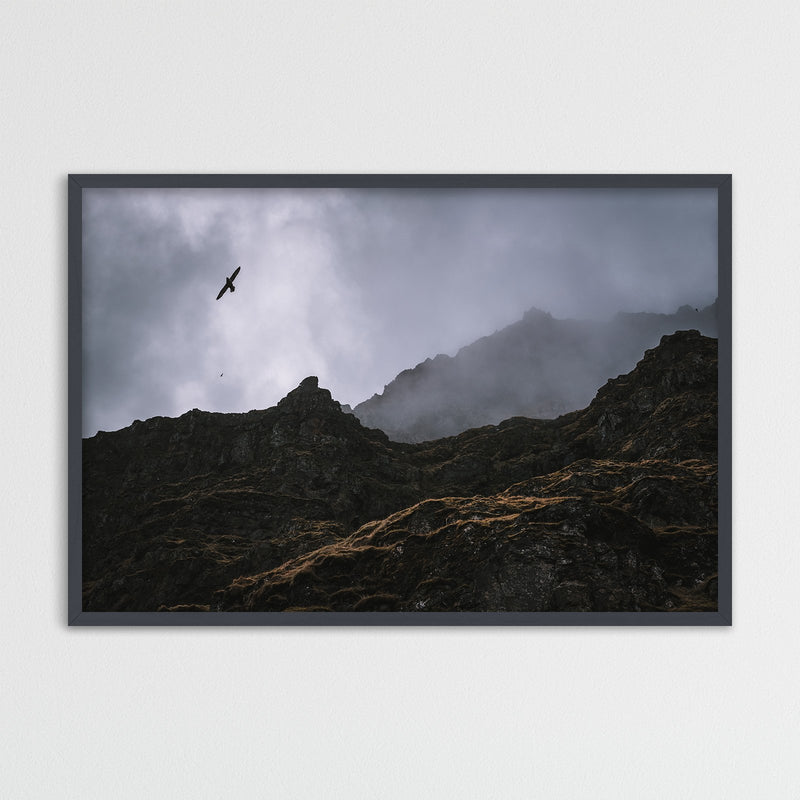 Seagulls over Cliffs in Iceland | Photography Print by Northlandscapes