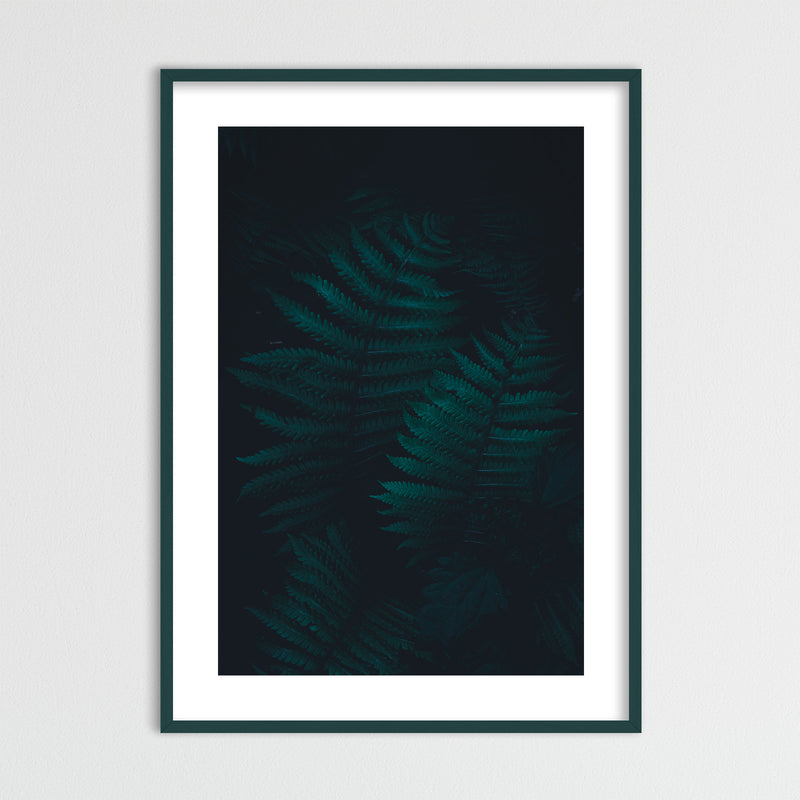 Dark and Moody Forest of Norway | Framed Photo Print by Jan Erik Waider