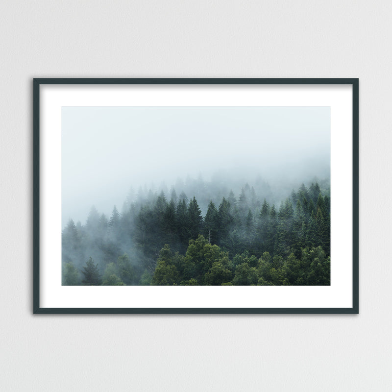 Moody Forest after the Rain | Framed Photo Print by Jan Erik Waider