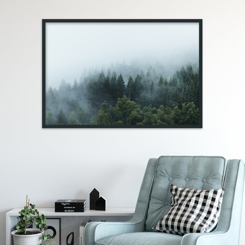 Moody Forest after the Rain | Fine Art Photography Print by Northlandscapes