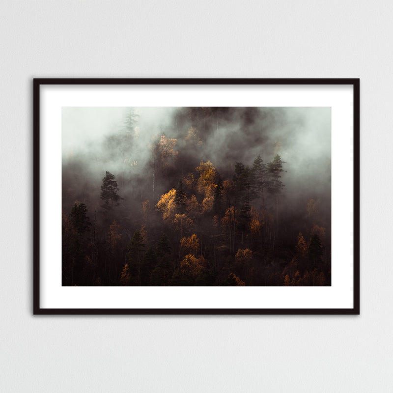 Moody Autumn Forest of Norway | Framed Photo Print by Jan Erik Waider