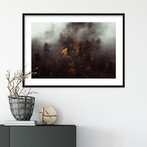 Moody Autumn Forest of Norway | Wall Art Print by Jan Erik Waider