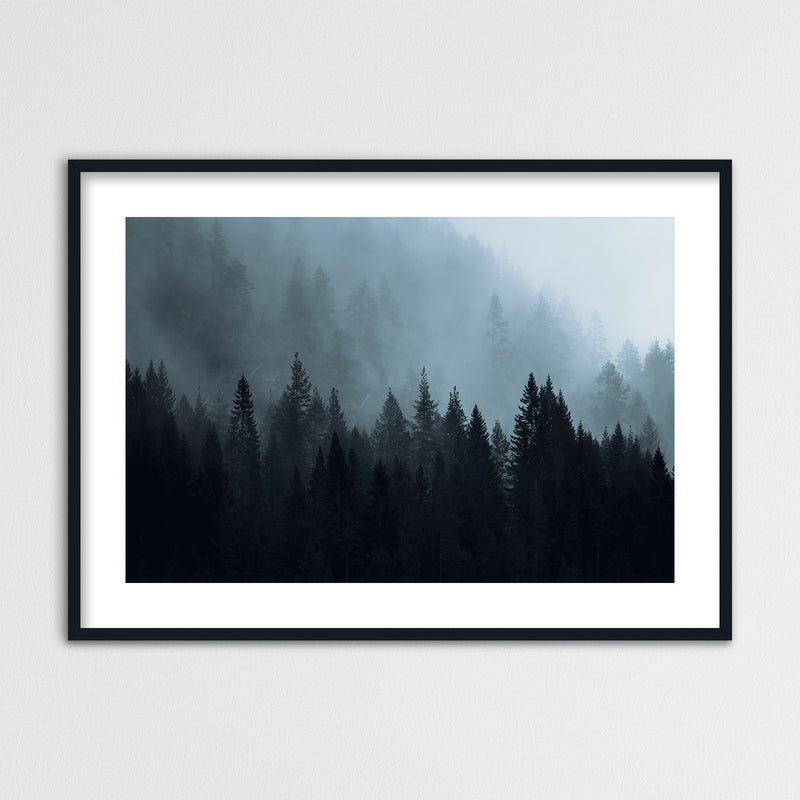 Dark Autumn Forest of Scandinavia | Framed Photo Print by Jan Erik Waider