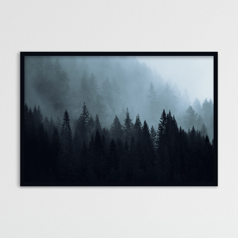 Dark Autumn Forest of Scandinavia | Photography Print by Northlandscapes