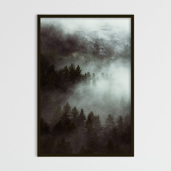 Dramatic Autumn Weather over Forest | Photography Print by Northlandscapes
