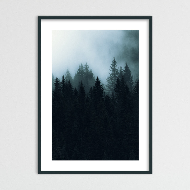 Dark and Foggy Forest of Norway | Framed Photo Print by Jan Erik Waider