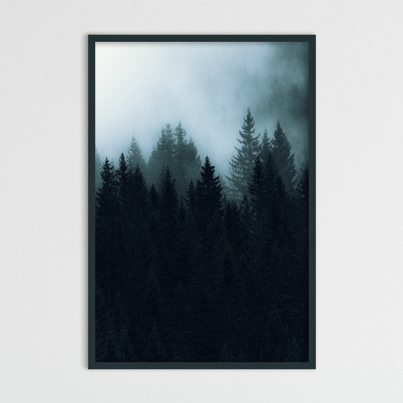 Dark and Foggy Forest of Norway | Photography Print by Northlandscapes