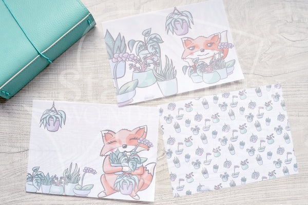 Foxy's plant babies vellum dashboards