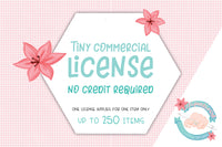 Tiny commercial License - Up to 250 items