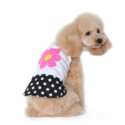 Flower and Dots Dog Dress