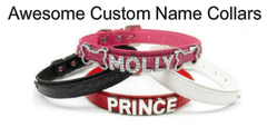 Create Your Personalized Dog Collars Here!