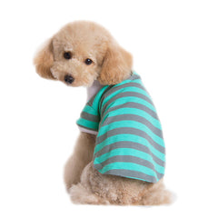 Green Mint and Gray Dog Polo