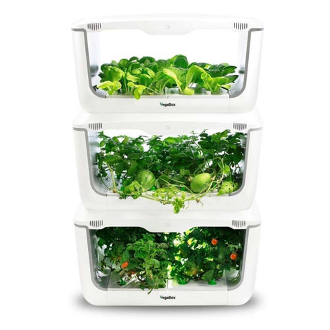 vegebox indoor hydroponics garden