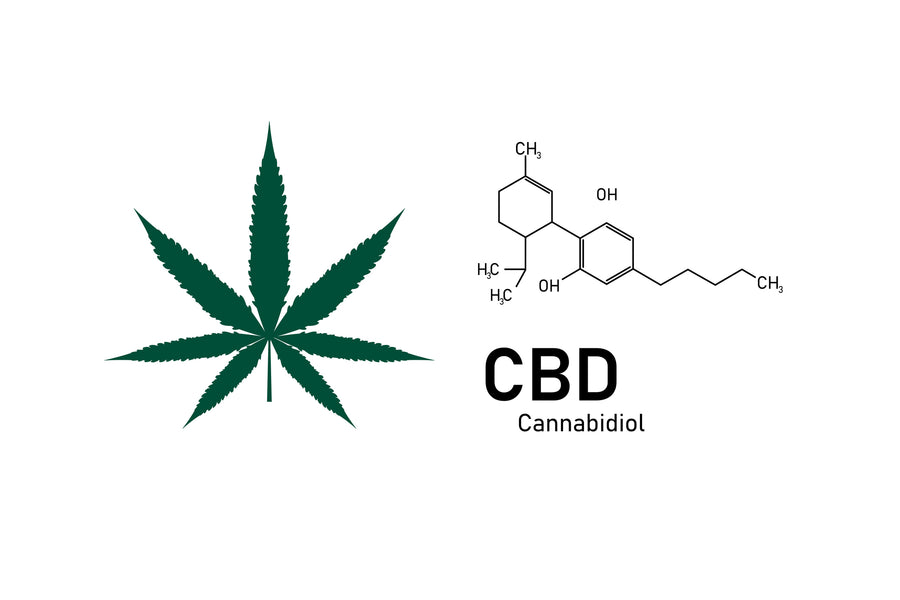 CBD - what is it and how do we use it?