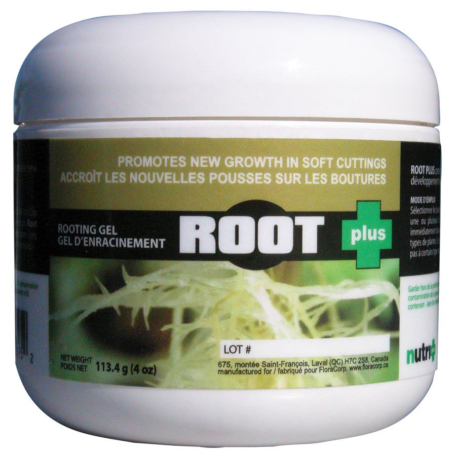 Nutri Plus - Root Plus 2 OZ