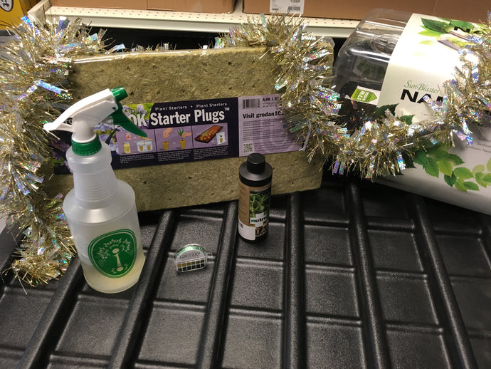 12 Daze Of Christmas - Seedling Starter Kit